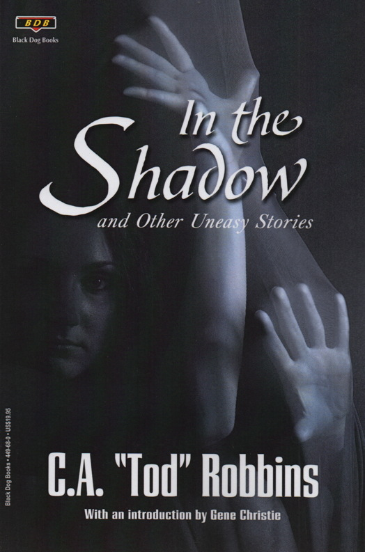 In the Shadow cover art